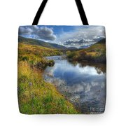 Upstream To The Bridge Tote Bag