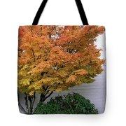 Urban Fall  Tote Bag