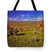 Valley At Fossil Butte Nm Tote Bag