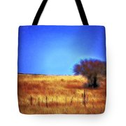 Valley San Carlos Arizona Tote Bag