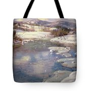 Valley Stream In Winter Tote Bag