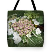 Variegated Lace Cap Hydrangea - Pink And White Tote Bag