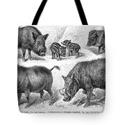 Varieties Of Swine Tote Bag