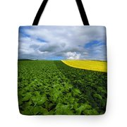 Vegetables, Cabbages Tote Bag