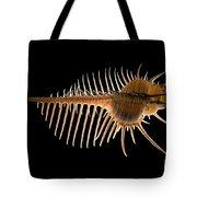 Venus Comb Murex Shell Tote Bag