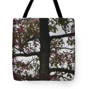 Verdant To Red Tote Bag