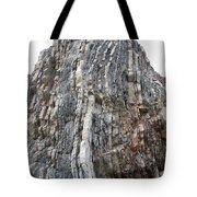Vertical Sedimentary Strata Tote Bag