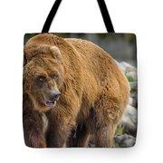 Very Big Bear Tote Bag