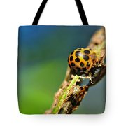 Very Hungry Ladybird 2 Tote Bag
