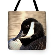 Very Interesting Tote Bag