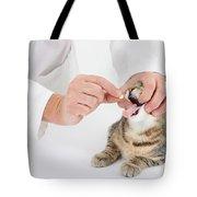 Vet And Kitten Tote Bag