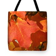 Vibrant Maple Tote Bag