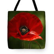 Vibrant Red Oriental Poppy Wildflower Tote Bag