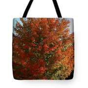 Vibrant Sugar Maple Tote Bag