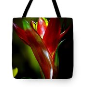 Vibrantly Rich In Red Tote Bag