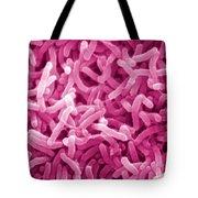Vibrio Cholerae Tote Bag