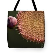 Victoria Amazonica Budding Tote Bag