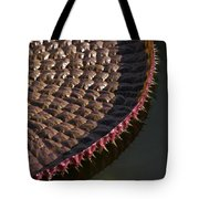 Victoria Amazonica Leaf Vertical Tote Bag