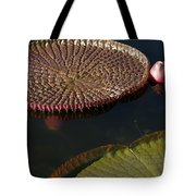 Victoria Amazonica Leaves Tote Bag