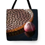 Victoria Amazonica Giant Water Lily Tote Bag