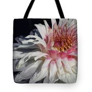 Victoria Water Lily Tote Bag