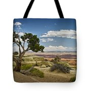 View From A Mesa Tote Bag