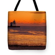 View From Shore Tote Bag