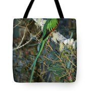 View Of A Male Resplendent Quetzal Tote Bag