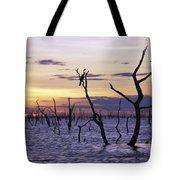 View Of Lake Kariba At Sunset Tote Bag