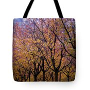 View Of Prague From Mala Strana Park Tote Bag