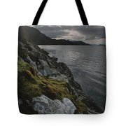 View Of The Mossy Shoreline Of Taraba Tote Bag