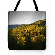 Vignette Of Autumn Gold  Tote Bag