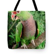 Vinaceous-breasted Parrot Amazona Tote Bag