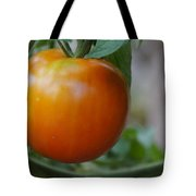 Vine Ripe Tomato Tote Bag
