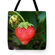 Vine Ripened Strawberry Tote Bag