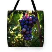 Vineyard 31 Tote Bag