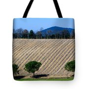 Vineyard On A Hill With Trees Tote Bag