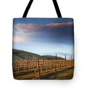 Vineyard Storm Tote Bag by Mike  Dawson