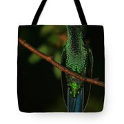 Violet-crowned Woodnymph Tote Bag