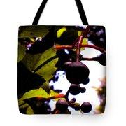 Virginia Creeper Fruit Tote Bag
