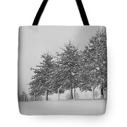 Virginia Snow Tote Bag