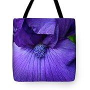 Vision In Violet Tote Bag