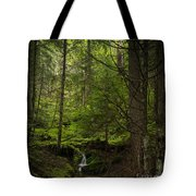 Vision Of Life Tote Bag by Mike Reid