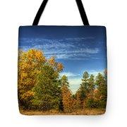 Visions Of Fall  Tote Bag