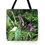 Visit From A Black Swallowtail Tote Bag