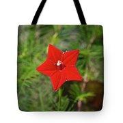 Vivid Star Tote Bag