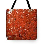 Vividly Sugar Maple Tote Bag