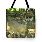 Vocal 10 Point 9544 4378 Tote Bag