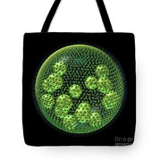 Volvox Tote Bag by Russell Kightley