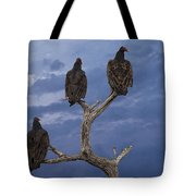 Vultures Perched On A Branch No.0022 Tote Bag
